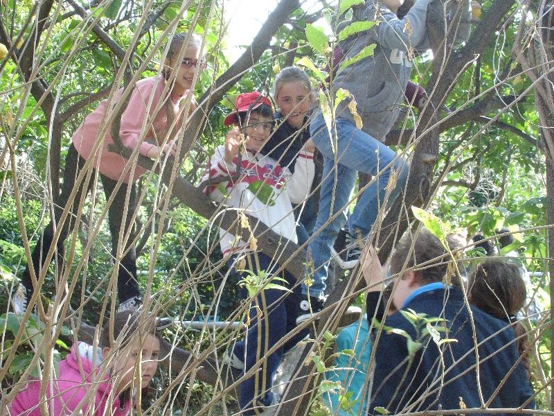 fabbri-scuola-natura-2011-4-1